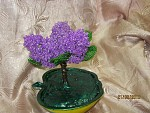 getimage-1-.jpg