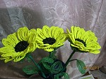 getimage-2-.jpg