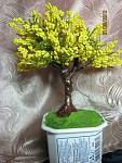 getimage-3-.jpg