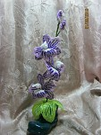 getimage.jpg