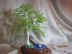 getimage-6-.jpg